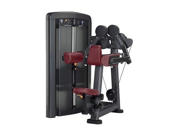 美国力健(Life Fitness)Insignia系列 肩膊提升训练器SSLR