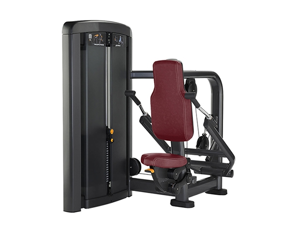 美国力健(Life Fitness)三头肌训练器SSTP